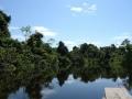 12. Přítok řeky Nanay (černá voda); poblíž Iquitos, Loreto, Peru (LB).