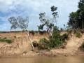 6. Eroze nárazového břehu; řeka Yuruá, Ucayali, Peru (JL).