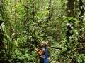 2. Interiér nížinného lesa; poblíž vesnice Shiriara, Loreto, Peru (LB).
