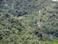 1. Horský les; Národní park Tingo María, Huanuco, Peru (JL).