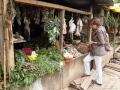 2. Nákup rostlin a inventarizace herbalistického stánku na (částečně zrušeném) trhu Bellavista ve městě Pucallpa, Ucayali, Peru (LB).