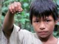 Ethnozoology Asháninca, Shoniro, Yuruá, Ucayali, Perú JL