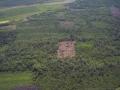 2. Odlesňování sekundárního lesa, poblíž města Pucallpa, Ucayali, Peru (JL).