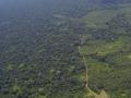 4. Odlesňování a fragmentace lesa, nedávno založený Národní Park Sierra del divisor, Ucayali, Peru (JL).