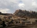8. Skladování dřeva v přístavu ve městě Pucallpa, Ucayali, Peru (AR).