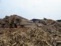 9. Skladování dřeva v přístavu ve městě Pucallpa, Ucayali, Peru (LB).