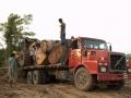 10. Transport dřeva z města Pucallpa, Ucayali, Peru (LB).