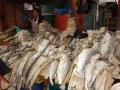 4. Nasolené ryby na trhu Bellavista ve městě Pucallpa, Ucayali, Peru (LB).